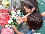 Ação emergencial combate a dengue no cemitério