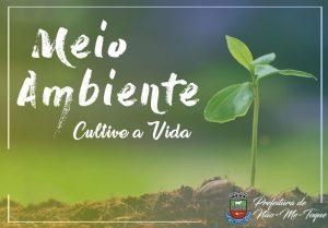 Junho, o mês do Meio Ambiente!